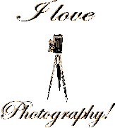 I love photography antique accordion box camera old school with wooden tripod Keywords:  love photography antique accordion box camera old school with wooden tripod