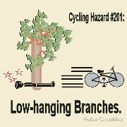 cycling hazard low hanging branches bike still going Keywords: cycling hazard low hanging branches bike still going